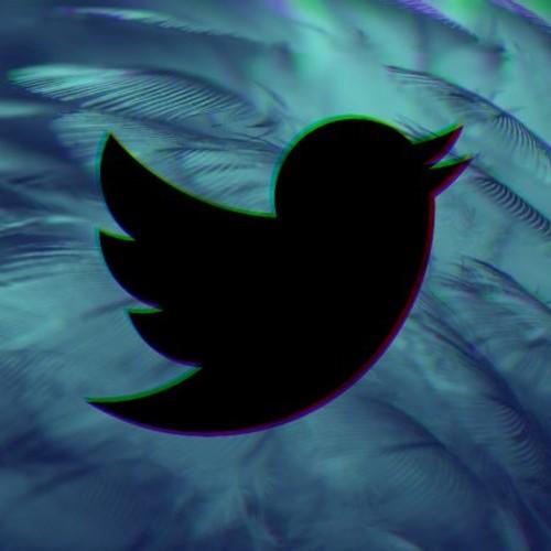 Twitter lança ferramenta de combate e prevenção à violência contra mulher